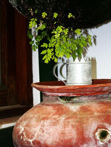 destiladera-de-estrella1